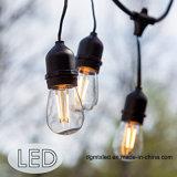 Sternenklares LED-Dekorationbirnen-Zeichenkettelicht für Weihnachten/Patio/Schlafzimmer/Haus
