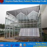 Парник горячего DIP гальванизированный стальной прочный стеклянный для огурца