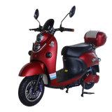 専門知識の工場流行の電気バイク