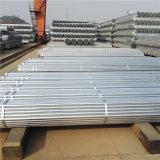 Reg del tubo de acero galvanizado para valla según BS1387 estándar Clase B