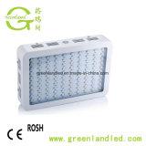 La pianta quadrata di alta qualità 6*50W 300W LED delle serre coltiva l'indicatore luminoso