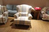 Presidenza moderna della mobilia della casa del sofà con tessuto per la presidenza del salone/presidenza di salotto