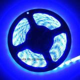 indicatore luminoso di striscia blu di 12V SMD 5630 LED con Ce approvato