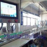 Bratrost-Gewicht-Sorter (Bandförderertyp) exportiert nach Malaysia und dem Iran