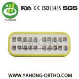 Ortodoncia Dental MIM Mini soportes Roth
