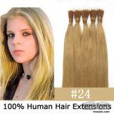 Cheia de cabelo humano Virgem Venda superior a extensão de cabelo (PPG-L-09696)