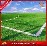 Hierba artificial de alta densidad del fútbol para Futsal