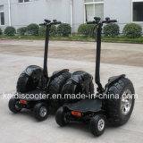 4 roue électrique du scooter 700W de roue grande