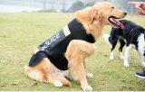 La police r3fléchissante d'animal familier de gilet de crabot protecteur investit