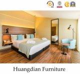 ヨーロッパ式のアパートの家具(HD216)