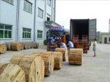 Fabricante del roedor resistente entierro directo cable de fibra óptica GYTY53