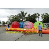Bola/caminata inflables del agua de la bola de la burbuja en bola del plástico del agua
