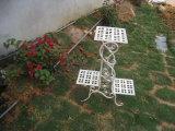 Archaized специальный держатель плантатора сада при покрынный порошок