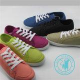Los hombres/mujeres Zapatos Zapatos de lona coloridos zapatos de inyección (SNC-011307)