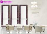 De populaire Stoel Van uitstekende kwaliteit van de Salon van de Stoel van de Kapper van de Spiegel van de Salon (P2001F)