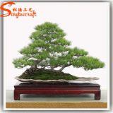 Intérieur Artificial Fiberglass Pine Bonsai Topiary Frame Plant Vente