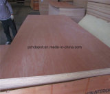 madera contrachapada de 915X1830m m 1220X2440m m Okoume/Bintangor