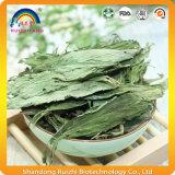Kräutertee trocknete Stevia-Blatt-Tee mit Steviozid