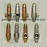 Het Brons/het Roestvrij staal van het Merk van Aetv 304/316 Afblaasklep van de Druk van de Veiligheid