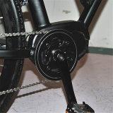 Stadt-elektrisches Fahrrad mit MITTLEREM Motor (RSEB-511)