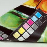 옥외 광고를 위한 직업적인 생성 비닐 기치 Frontlit