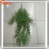 عشب اصطناعيّة لبلاب دائم خضرة لأنّ زخرفة بيتيّة