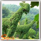 Plantas en forma de animales Arbusto Topiary