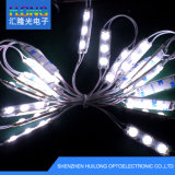 CE/RoHS DC12V impermeabilizzano il modulo di illuminazione LED dell'annuncio