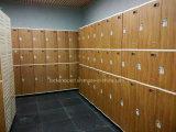 Локер 3 ABS двери пластичный для комнаты гимнастики изменяя