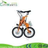 E-Bike стали углерода складной складывая