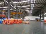 Allumeur de bobine d'acier inoxydable de Dingxin 201