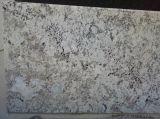 Galettes blanches coloniales blanches de granit de Dallas de galaxie blanche Polished en gros