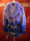 Rex заяц нанесите синий Фокс втулку