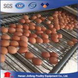 Машина полноавтоматической клетки цыпленка цыплятины бройлера слоя оборудования цыплятины аграрная