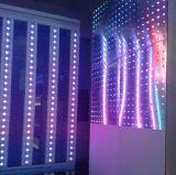 De Buis van het Gezicht van de LEIDENE Verlichting van de Bol (l-215-s48-RGB) Iluminacion
