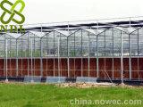 Le type serres chaudes en verre commerciales de Venlo d'envergure multi de fleur a employé