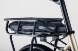 [36ف] [250و] محرّك طريق [وومن&بريم] درّاجة كهربائيّة لأنّ عمليّة بيع