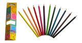 3.5 Карандаш карандаша цвета карандаша цвета