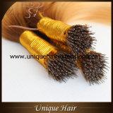 Нарисованный двойник выдвижений волос кольца Ombre Nano
