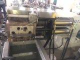결정화 건조용 기계장치를 가진 애완 동물 쌍둥이 나사 알갱이로 만드는 압출기