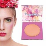 Профессиональные Fa⪞ E окрашивание Private Label Blusher макияжа