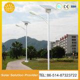 熱い新製品の太陽高品質LEDの街灯50W