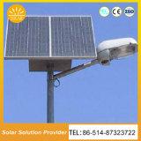 Indicatore luminoso di via solare astuto su ordinazione di formato e di disegno del fornitore della Cina