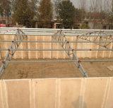 Casa de galinha da construção de aço do vidro de fibra da boa qualidade/exploração agrícola do quarto