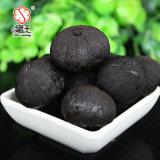 Alho preto de alta qualidade e alho preto feito de China 200g