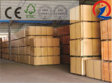 2.2mm-30m m Sr. del pegamento de la madera contrachapada del álamo F/B Bingtangor de la base de 1200m m * de 2400m m