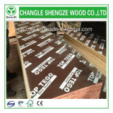 Bestes Selling in UAE Market Film Faced Plywood
