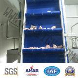 Automatische flache führende Zeile der Förderanlagen-Psj1600
