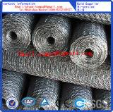 Шестиугольный PVC ячеистой сети и гальванизировано