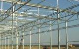 Падение с возможностью горячей замены стекла оцинкованной стали выбросы парниковых газов на огурец